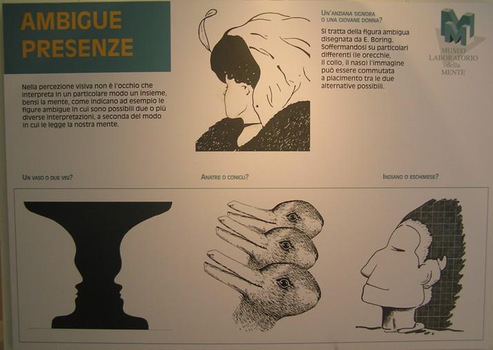 museo mente
